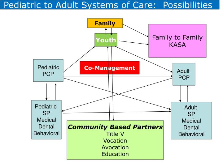 Pediatric to Adult Systems of Care:  Possibilities
