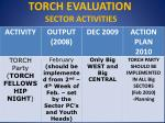 torch evaluation sector activities