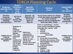 torch planning cycle3