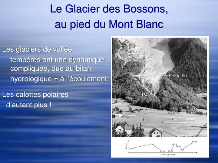 Le Glacier des Bossons,