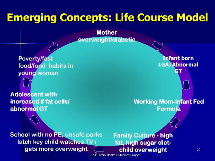 Emerging Concepts: Life Course Model