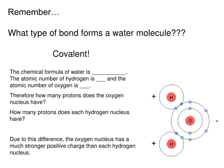 Remember what type of bond forms a water molecule covalent