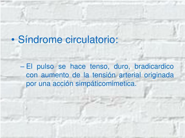 Síndrome circulatorio: