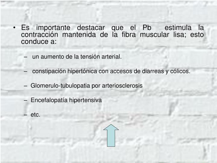 Es importante destacar que el Pb  estimula la contracción mantenida de la fibra muscular lisa; esto conduce a:
