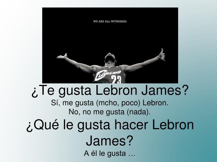 ¿Te gusta Lebron James?