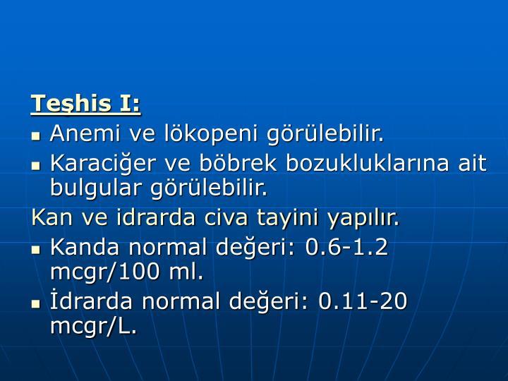 Teşhis I: