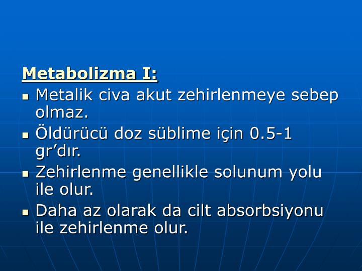 Metabolizma I: