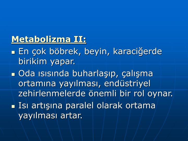 Metabolizma II:
