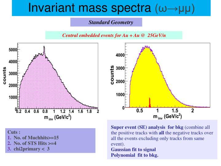 Super event (SE) analysis  for bkg