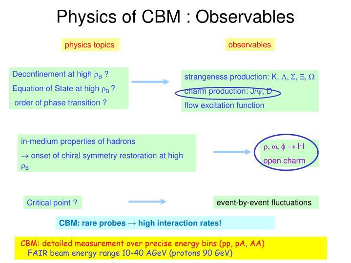 Physics of cbm observables