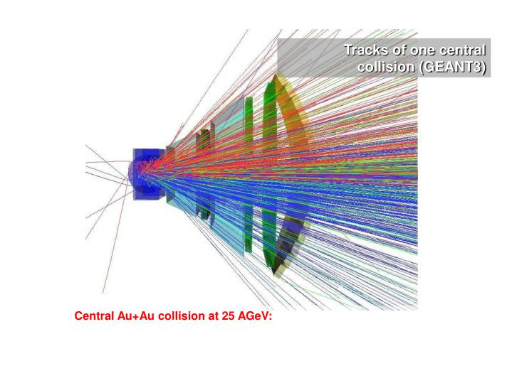 Tracks of one central collision (GEANT3)