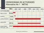 cronograma de actividades alternativa no 1 metas