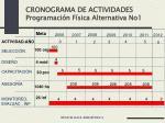 cronograma de actividades programaci n f sica alternativa no1