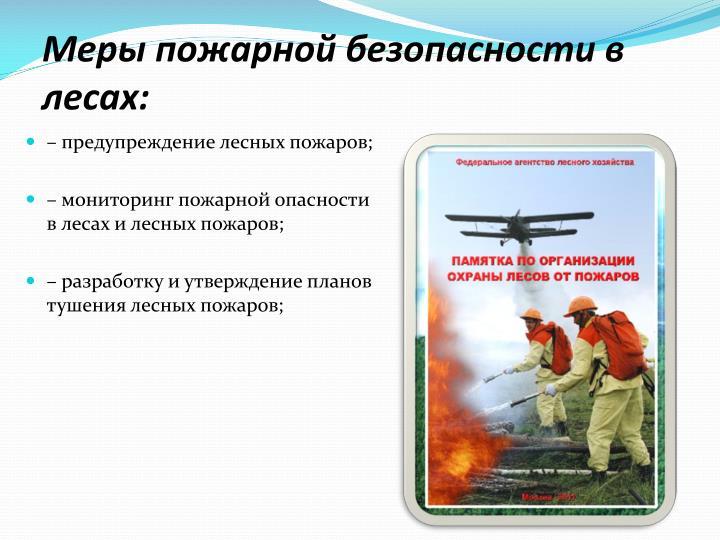 Меры пожарной безопасности в лесах: