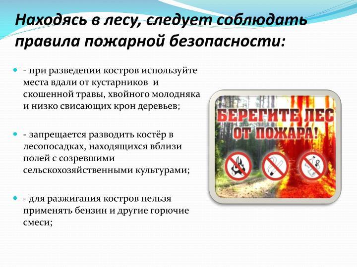 Находясь в лесу, следует соблюдать правила пожарной безопасности:
