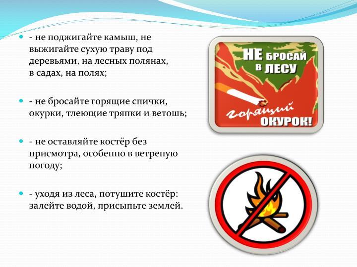 - не поджигайте камыш, не                                                                        выжигайте сухую траву под                                                                 деревьями, на лесных полянах,                                                                               в садах, на полях;