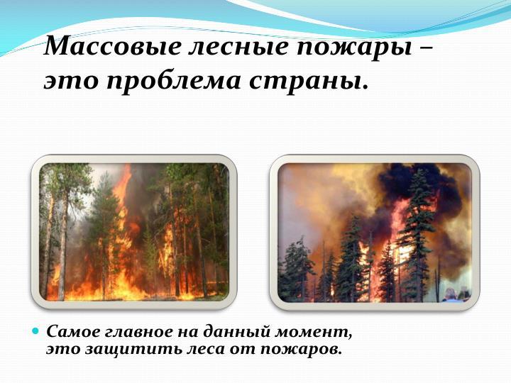 Массовые лесные пожары – это проблема страны.