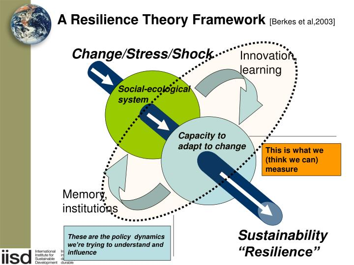 A Resilience Theory Framework