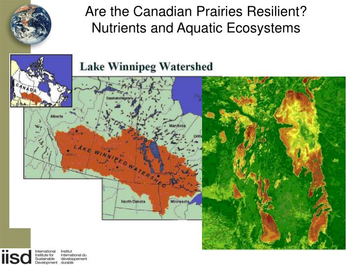 Are the Canadian Prairies Resilient?
