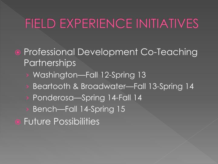 Field experience initiatives