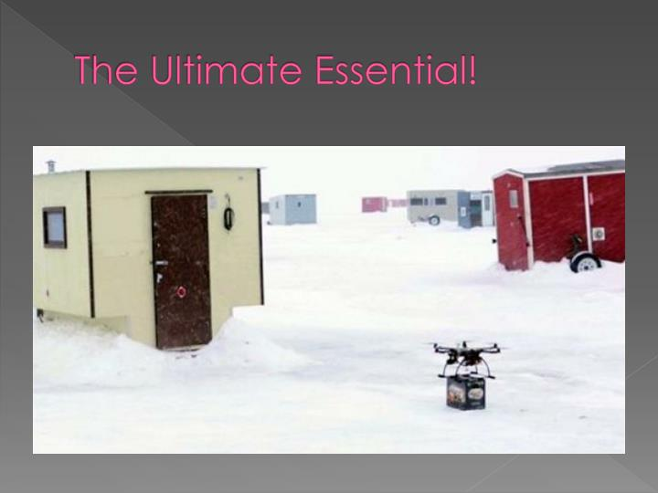 The Ultimate Essential!