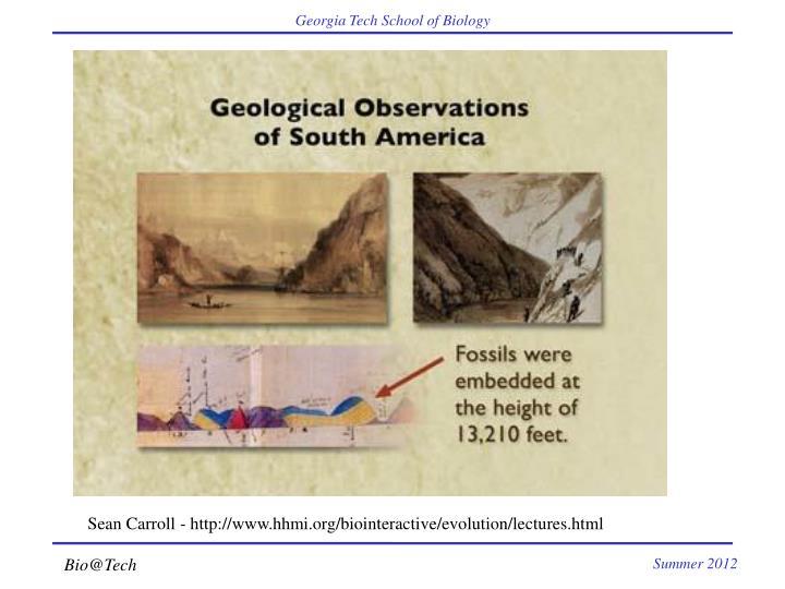 Sean Carroll - http://www.hhmi.org/biointeractive/evolution/lectures.html
