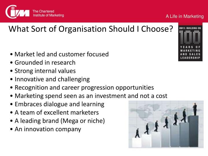 What Sort of Organisation Should I Choose?