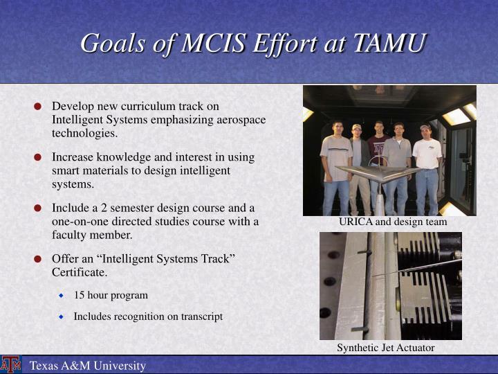 Goals of mcis effort at tamu