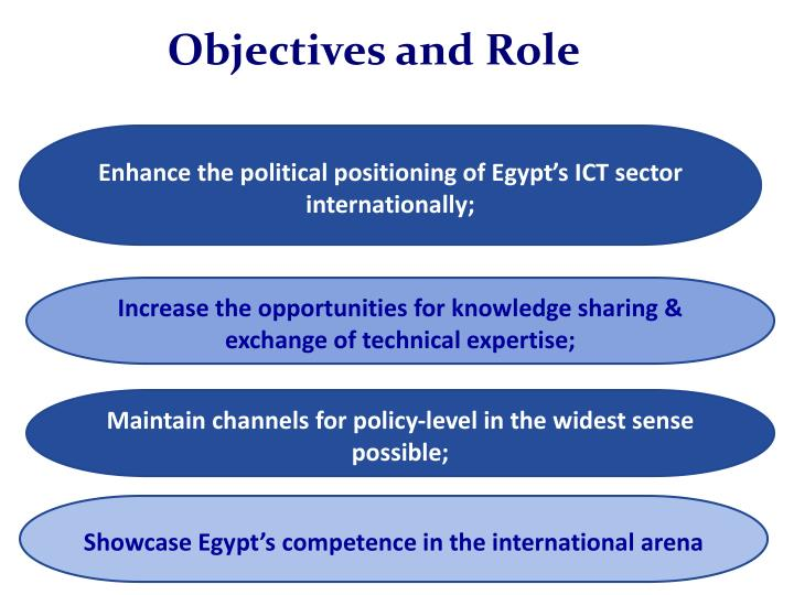 Objectives and Role