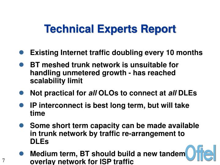 Technical Experts Report