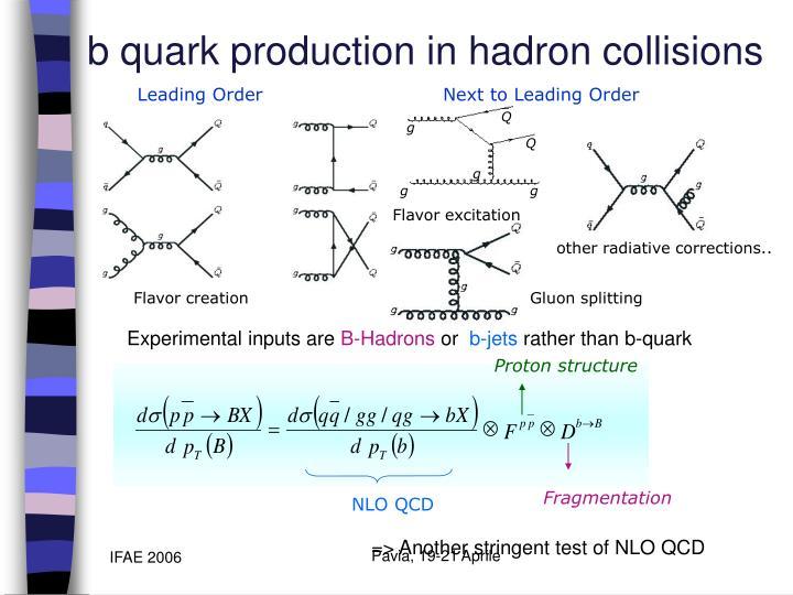 b quark production in hadron collisions