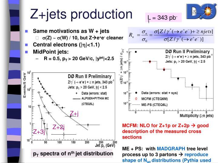 Z+jets production