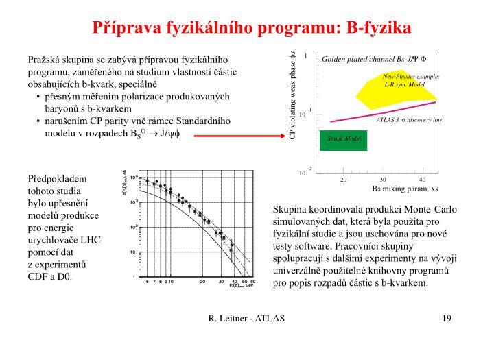 Příprava fyzikálního programu: B-fyzika