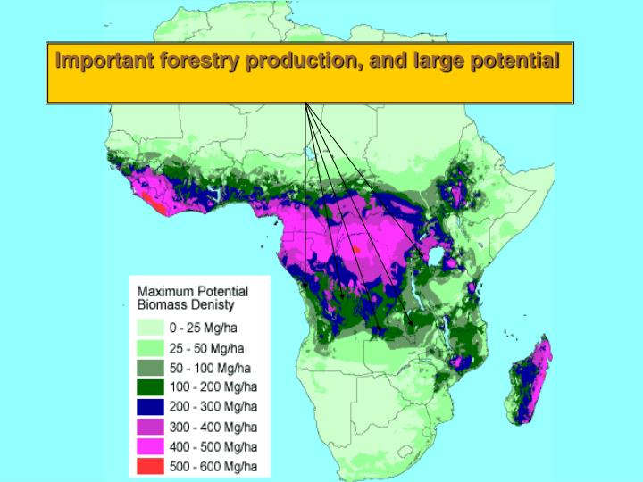Important forestry production, and large potential