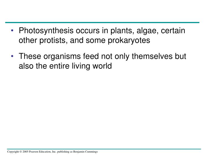 Photosynthesis occurs in plants, algae, certain other protists, and some prokaryotes