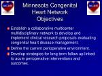 minnesota congenital heart network objectives