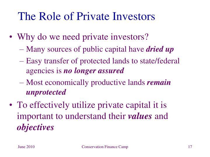The Role of Private Investors