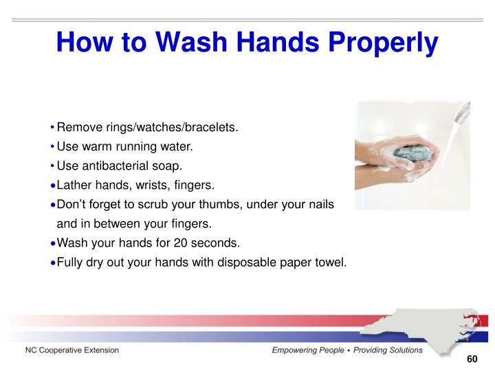 How to Wash Hands Properly