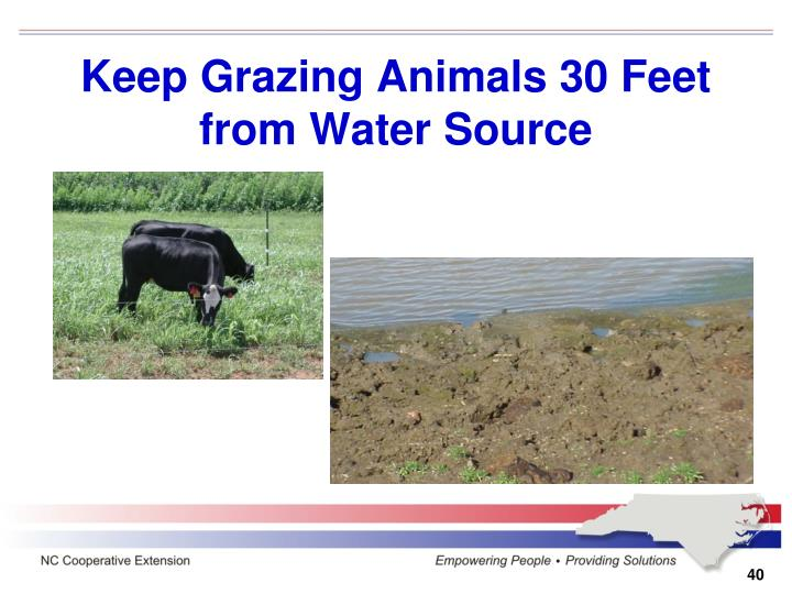 Keep Grazing Animals 30 Feet from Water Source