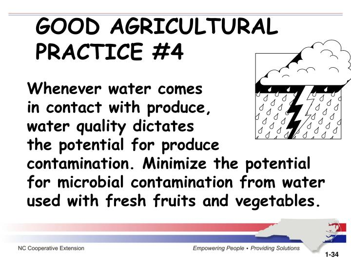 GOOD AGRICULTURAL                           PRACTICE #4
