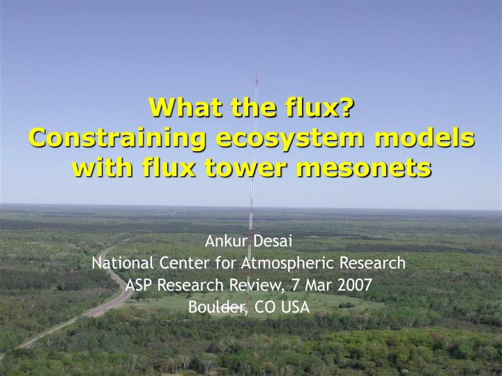 What the flux constraining ecosystem models with flux tower mesonets