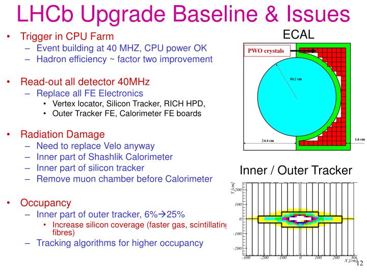 LHCb Upgrade Baseline & Issues