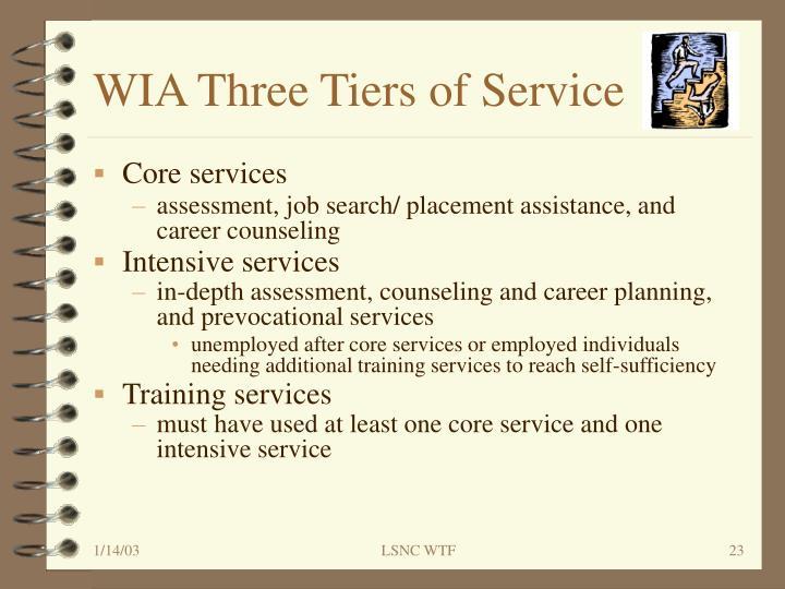 WIA Three Tiers of Service