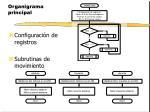 organigrama principal1