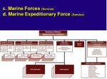 c marine forces service d marine expeditionary force service