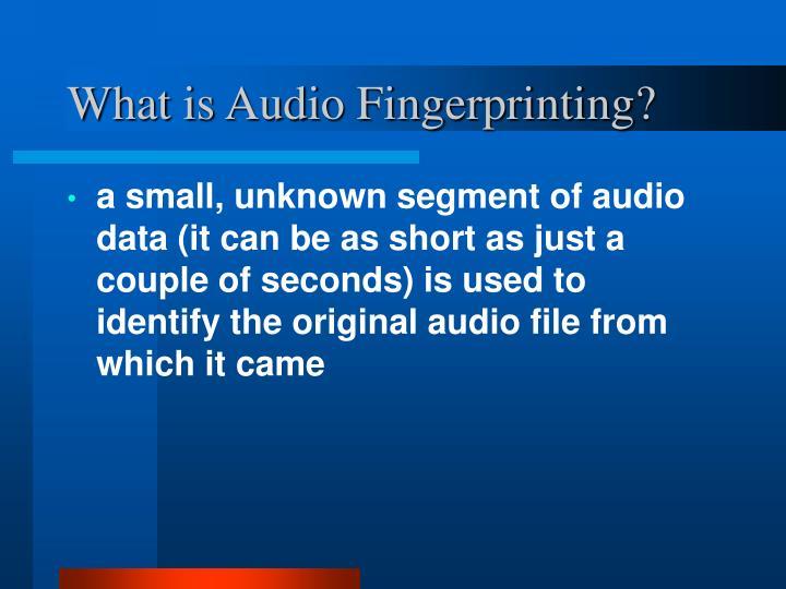 What is audio fingerprinting