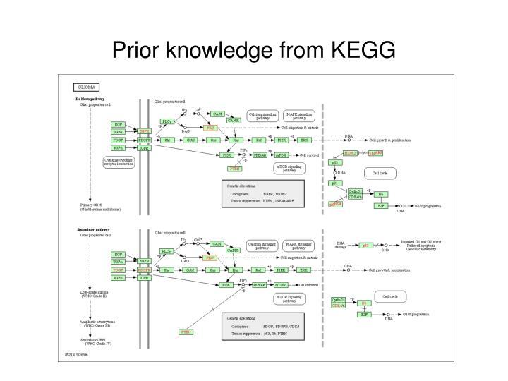 Prior knowledge from KEGG