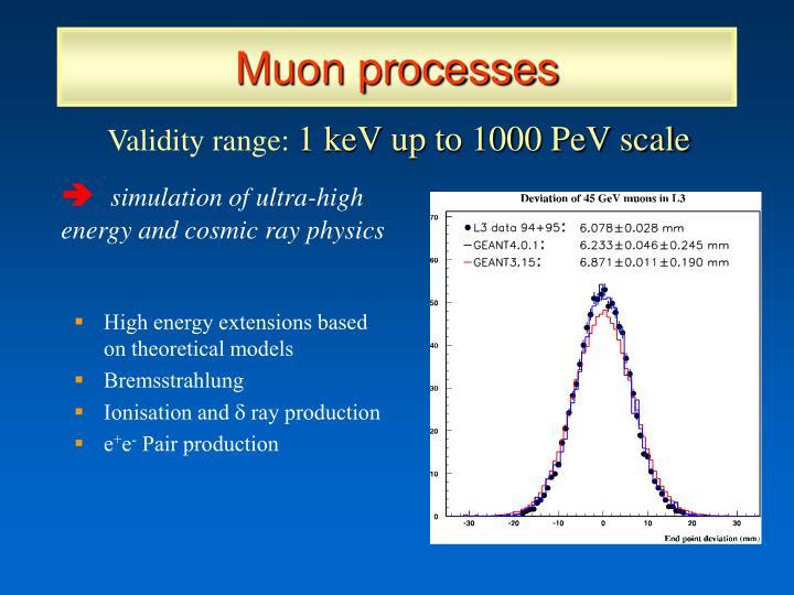 Muon processes