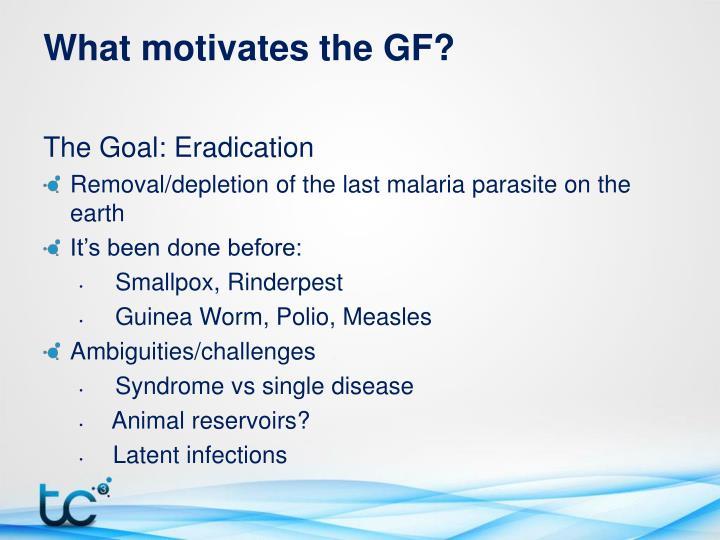 What motivates the GF?