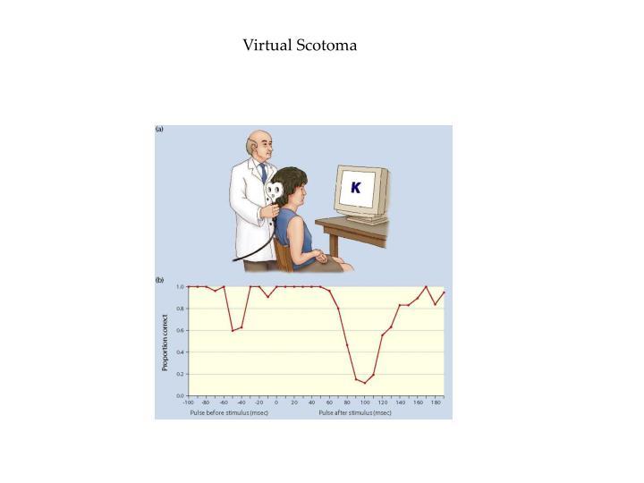 Virtual Scotoma